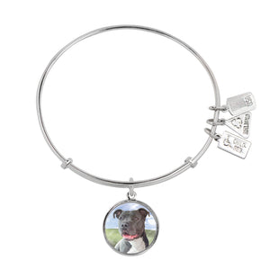 Wind & Fire Pit Bull Terrier Charm Bangle