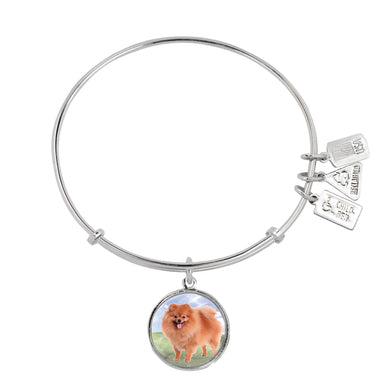 Wind & Fire Pomeranian Charm Bangle
