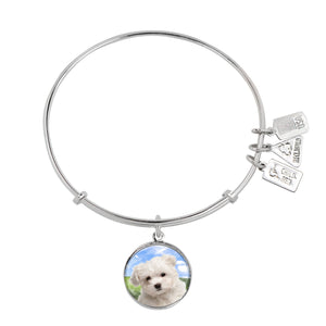 Wind & Fire Maltese Charm Bangle