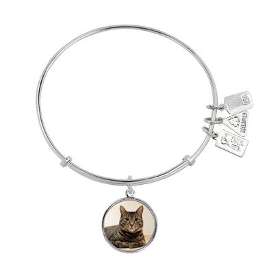 Wind & Fire Tabby Cat Charm Bangle