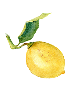 Lemon Fruit