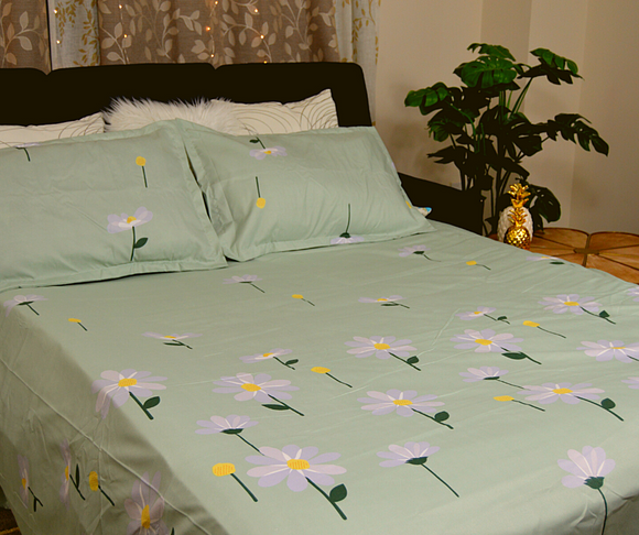 Bed Sheets (07)