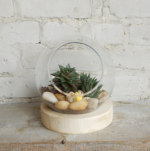 Load image into Gallery viewer, Workshop: Large Globe Terrarium