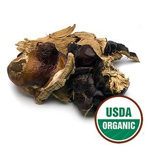 Reishi Mushroom - Christopher's Herb Shop