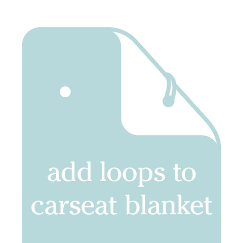 Add Car Seat Loops