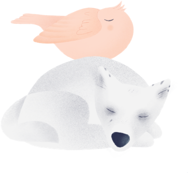 Peaches the bird sleeping on bear the sleeping baby wolf.