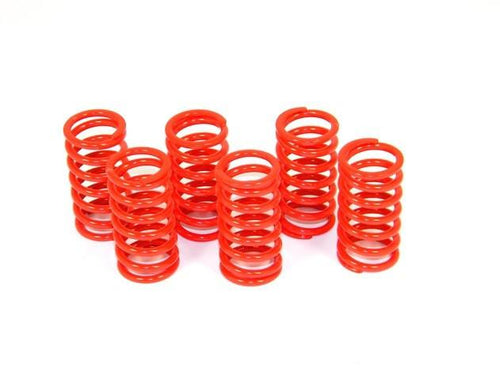 6M01 - Kit Clutch Springs - Ducabike.com.au