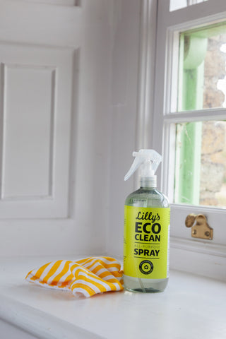 https://www.faerly.ie/collections/lillys-eco-clean