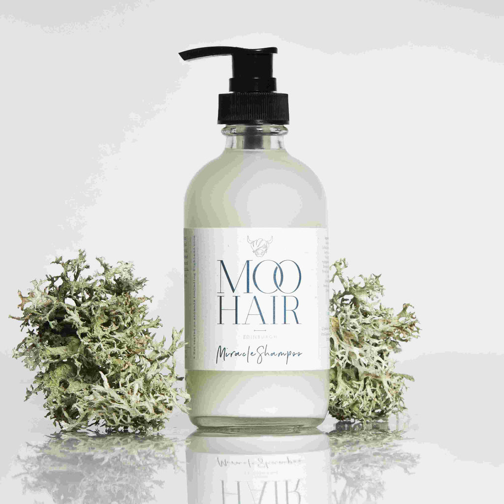 Moo Hair Miracle Shampoo
