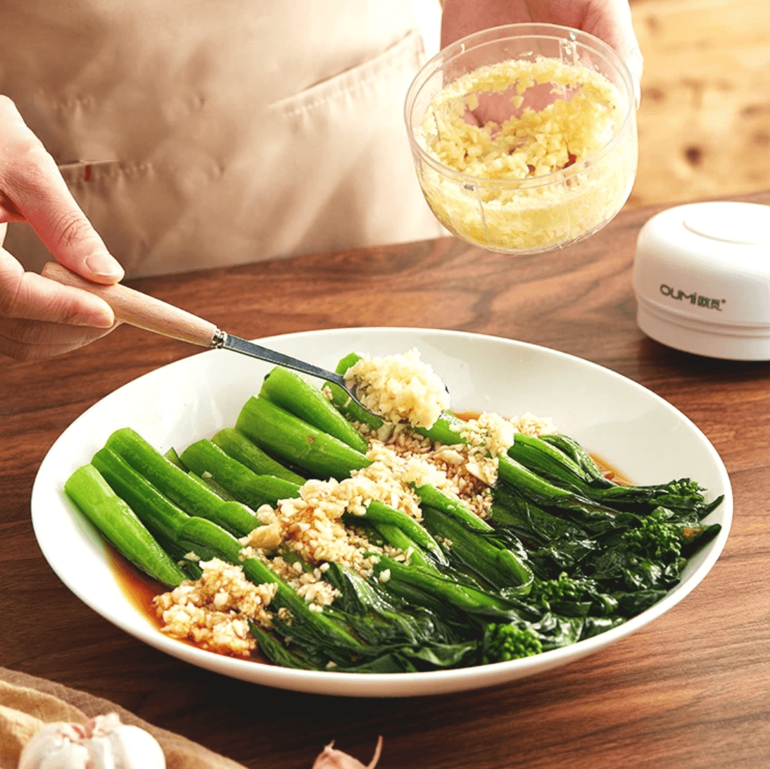 Mini Electric Food Chopper