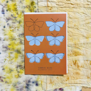 Common Blue Butterfly. A warm orange portrait card with six butterflies in rows of two. The butterflies are in the different stages of drawing showing the illustration going from just an outline to the full piece. At the bottom of the card is the english and latin names of the butterfly. Behind the card are naturally dyed fabrics featuring warm yellow, blue and orange tones. - Duck Egg Designs Co