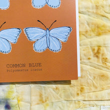 Load image into Gallery viewer, Common Blue Butterfly. A close up of the bottom right of the card featuring the fully drawn illustration and the name of the butterfly in both english and latin. You can see the edge of the white envelope in the card, and behind it is a naturally dyed fabric background. The card is a warm orange colour, with contrasting pale blue butterflies.- Duck Egg Designs Co