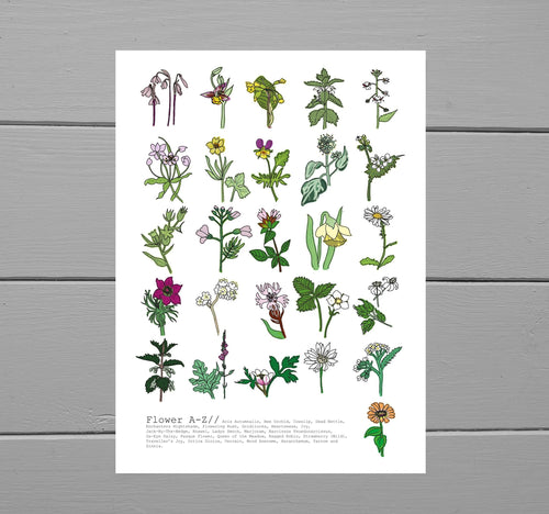 A to Z flower print featuring flower names at the bottom. Each flower is illustrated in full colour and placed on a white background. Behind the print is a grey wooden plank background.