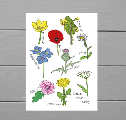 Common Wildflowers Print. Full colour art print featuring nine common wildflowers in digital illustration form. Behind the print is a grey wooden plank background. Next to each flower is it's name, helping you to identify them in real life. Duck Egg Designs Co