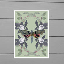Load image into Gallery viewer, Lepidoptera Moth Print - Duck Egg Designs Co