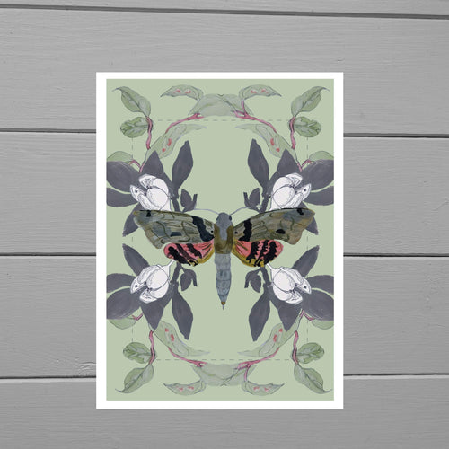 Lepidoptera Moth Print - Duck Egg Designs Co