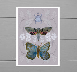 Butterfly, Moth and Rhino Beetle Print with a muted pink background featuring a blue butterfly, a brown, grey and red moth as well as a rhino beetle in front of a buttercup and bindweed frond background. Behind the print is a grey wooden plank background. - Duck Egg Designs Co