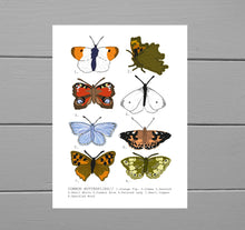 Load image into Gallery viewer, Common Butterflies Print. Close up view of the print on a grey wooden plank background. The illustration has a white background with eight butterflies of various colours and wing shapes in rows of two across it. To the left of each butterfly is a number and at the bottom of the print is a list of the butterfly names.  - Duck Egg Designs Co