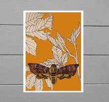 Load image into Gallery viewer, Death Head Moth Giclee Print. A warm orange print featuring brambles drawn with fineliner and a hand painted death head moth created using ink. Behind the print you can see a grey wooden plank background. - Duck Egg Designs Co