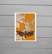 Load image into Gallery viewer, A further out view of the Death Head Moth Giclee Print. A warm orange print featuring brambles drawn with fineliner and a hand painted death head moth created using ink. Behind the print you can see a grey wooden plank background. - Duck Egg Designs Co