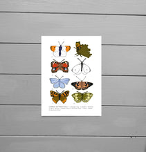 Load image into Gallery viewer, A further out view of the Common Butterflies Print. Close up view of the print on a grey wooden plank background. The illustration has a white background with eight butterflies of various colours and wing shapes in rows of two across it. To the left of each butterfly is a number and at the bottom of the print is a list of the butterfly names.  - Duck Egg Designs Co
