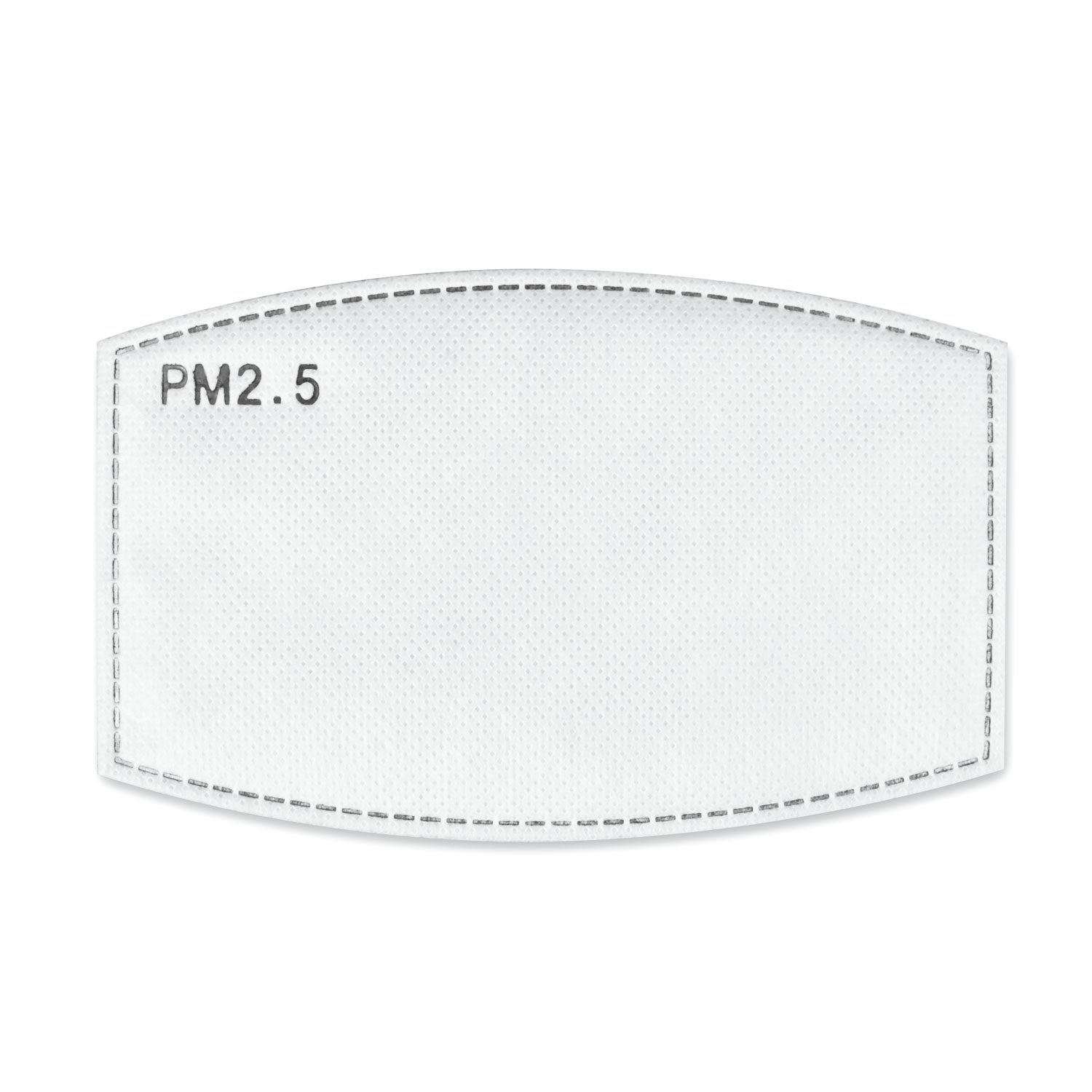 PM 2.5 Filter (10 Piece Pack)