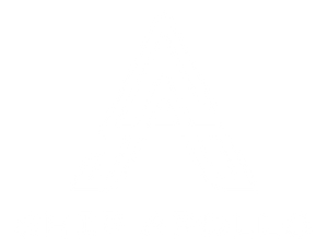 Ship Apollo