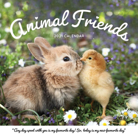 Paper Pocket - Animal Friends 2021 Calendar