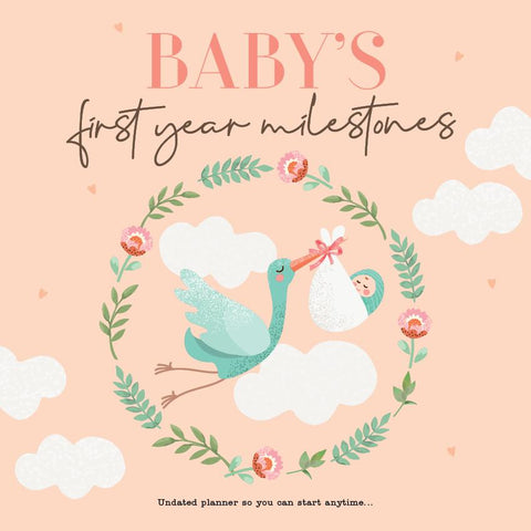 Paper Pocket - Babys First Year milestones - Undated
