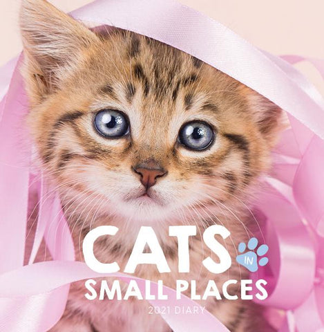 Paper Pocket - Cats in Small Places 2021 Diary