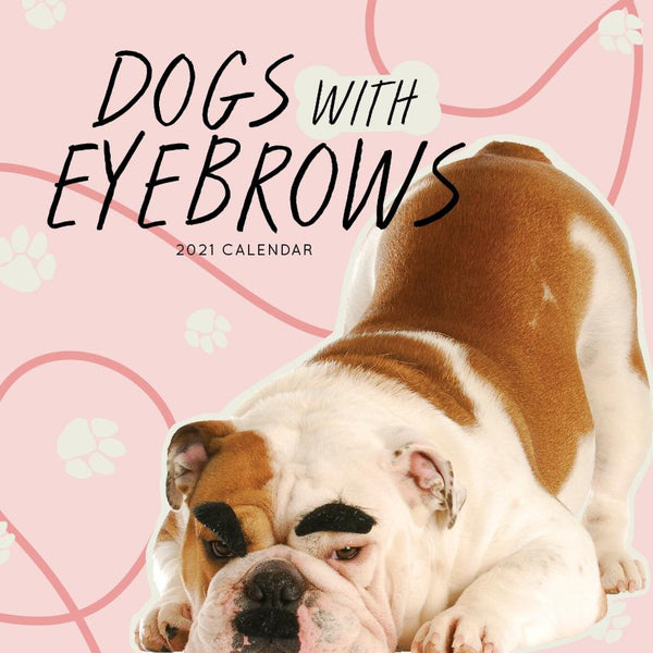 Paper Pocket - Dogs with Eyebrows 2021 Calendar