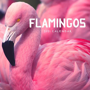 Paper Pocket - Flamingos 2021 Calendar