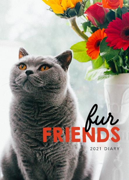 Paper Pockect - Fur Friends 2021 Diary