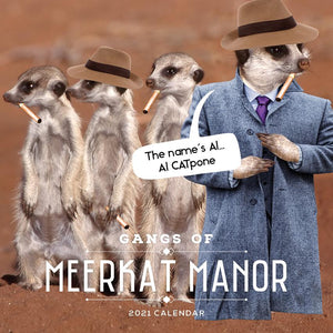 Paper Pocket - Gangs of Meerkat Manor 2021 Calendar