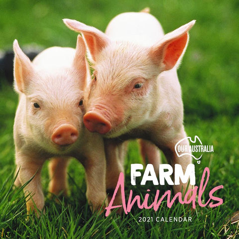Paper Pocket - Our Australia Farm Animals 2021 Calendar