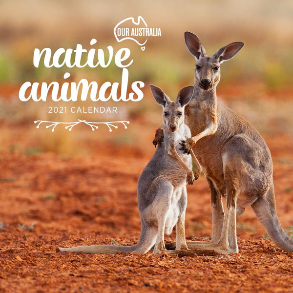 Paper Pocket - Our Australia Native Animals 2021 Calendar