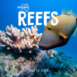 Paper Pocket - Our Australia Reefs: Above and below 2021 Calendar