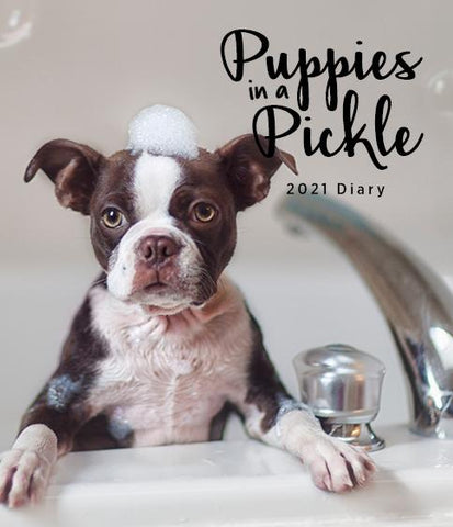 Paper Pocket - Puppies in a Pickle 2021 Diary