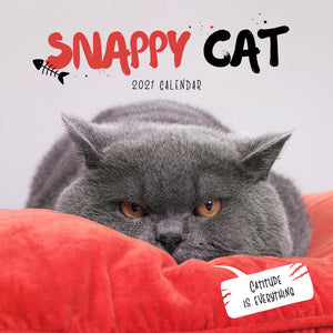 Paper Pocket - Snappy Cat 2021 Calendar