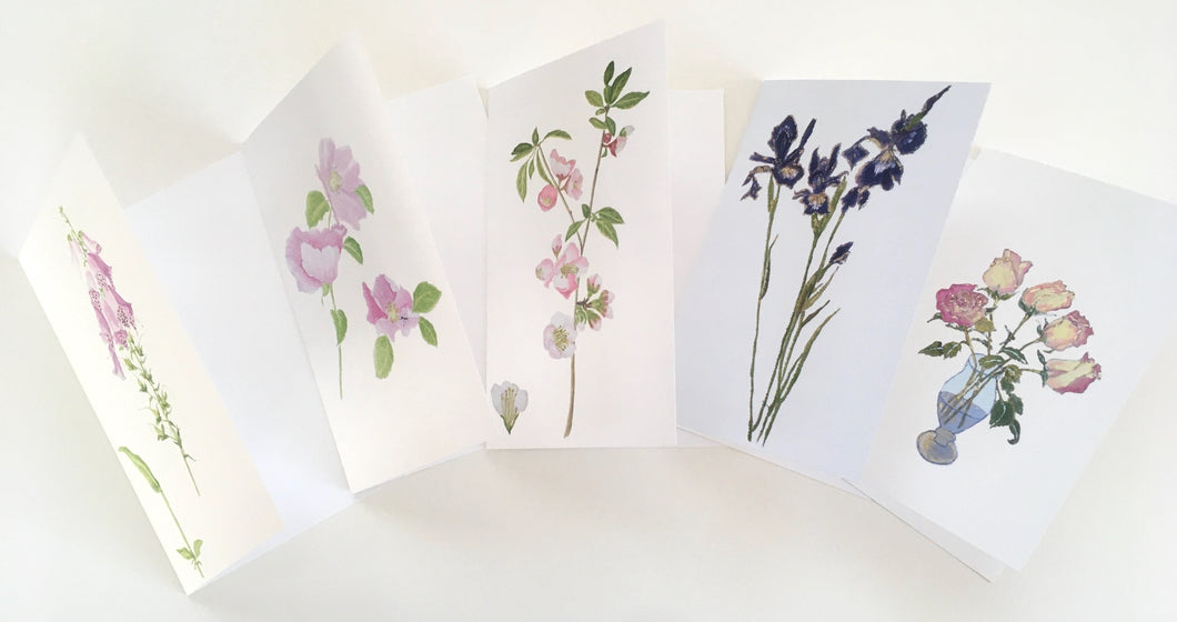 5 Botanical Note Cards IV | Gardens & Wildflowers of Cape Cod and the Islands