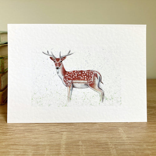 Deer Greeting Card - Kerry Dawn Illustration