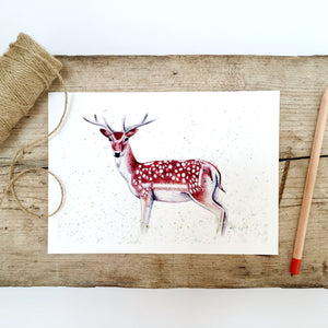 Fallow Deer Art Print - Kerry Dawn Illustration