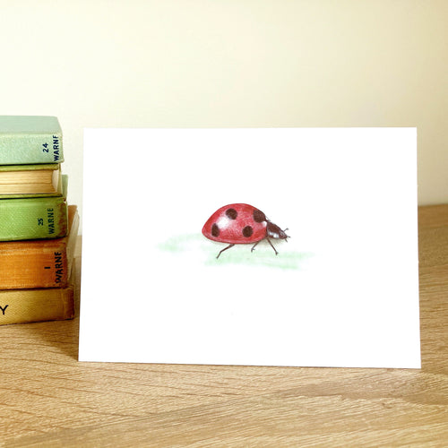Ladybird Ladybug Greeting Card - Kerry Dawn Illustration