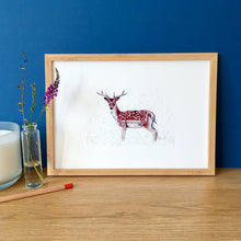 Load image into Gallery viewer, Fallow Deer Art Print - Kerry Dawn Illustration