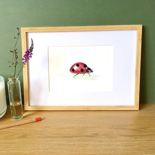 Ladybird Ladybug Art Print - Kerry Dawn Illustration