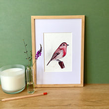 Load image into Gallery viewer, Robin Art Print - Kerry Dawn Illustration