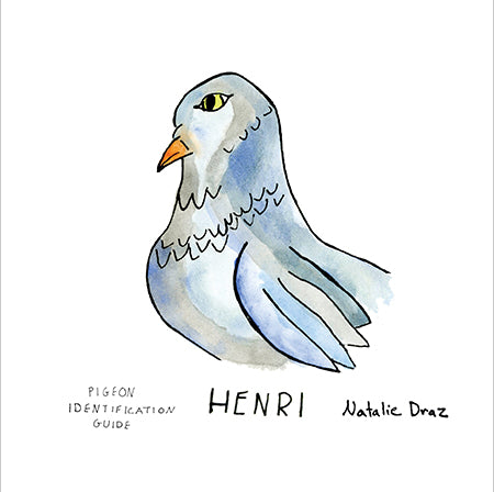 Henri the Pigeon - MAGNET