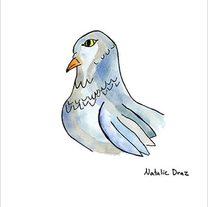 Grey Pigeon - ART PRINT