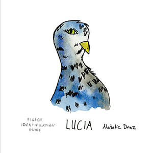 Lucia the Pigeon - MAGNET
