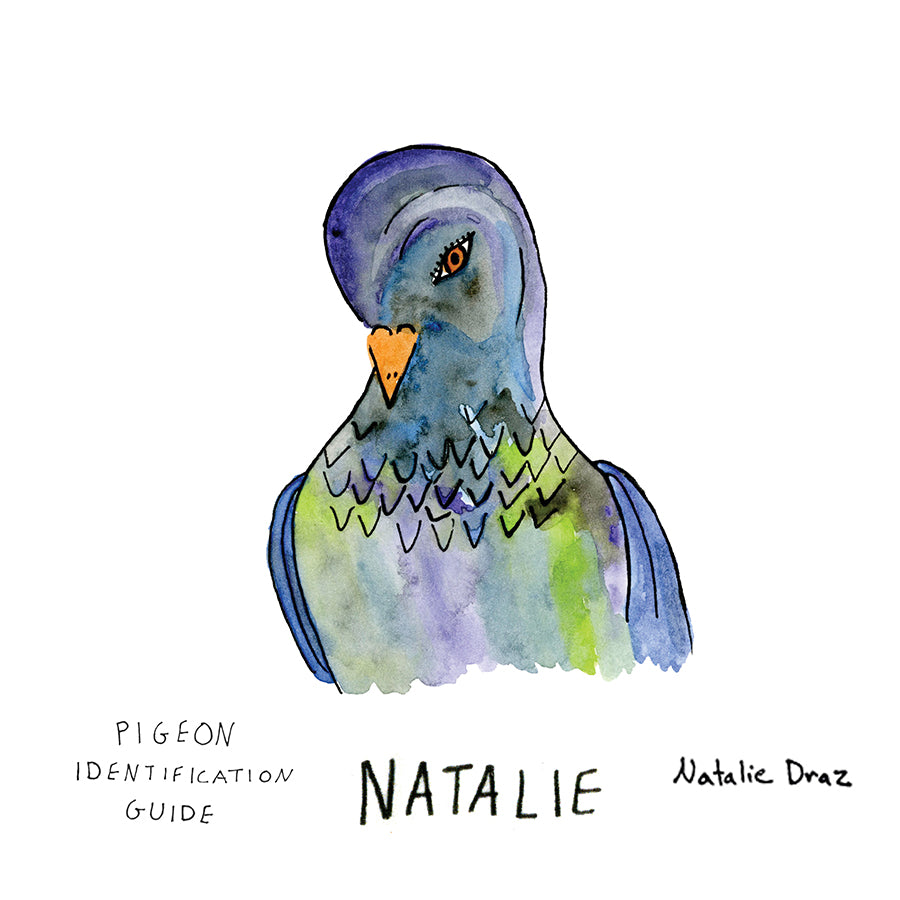 Natalie the Pigeon - MAGNET
